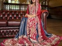 Bridal Dresses 2014 Collection Wedding Gowns Trends in India