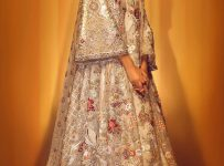 Latest designs Pakistani Bridal Dresses Color