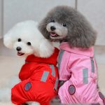 raincoats for small dogs with legs